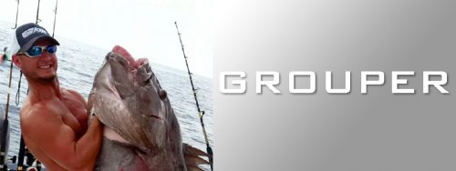 Grouper Series