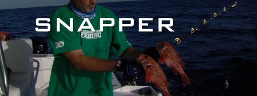 Snapper Series