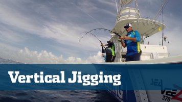 Vertical Jigging